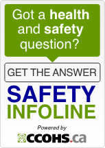 Image of Safety INfo Online decal.